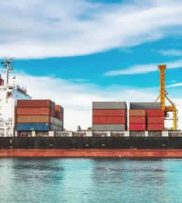 Denizyolu Taşımacılık / World Logistics